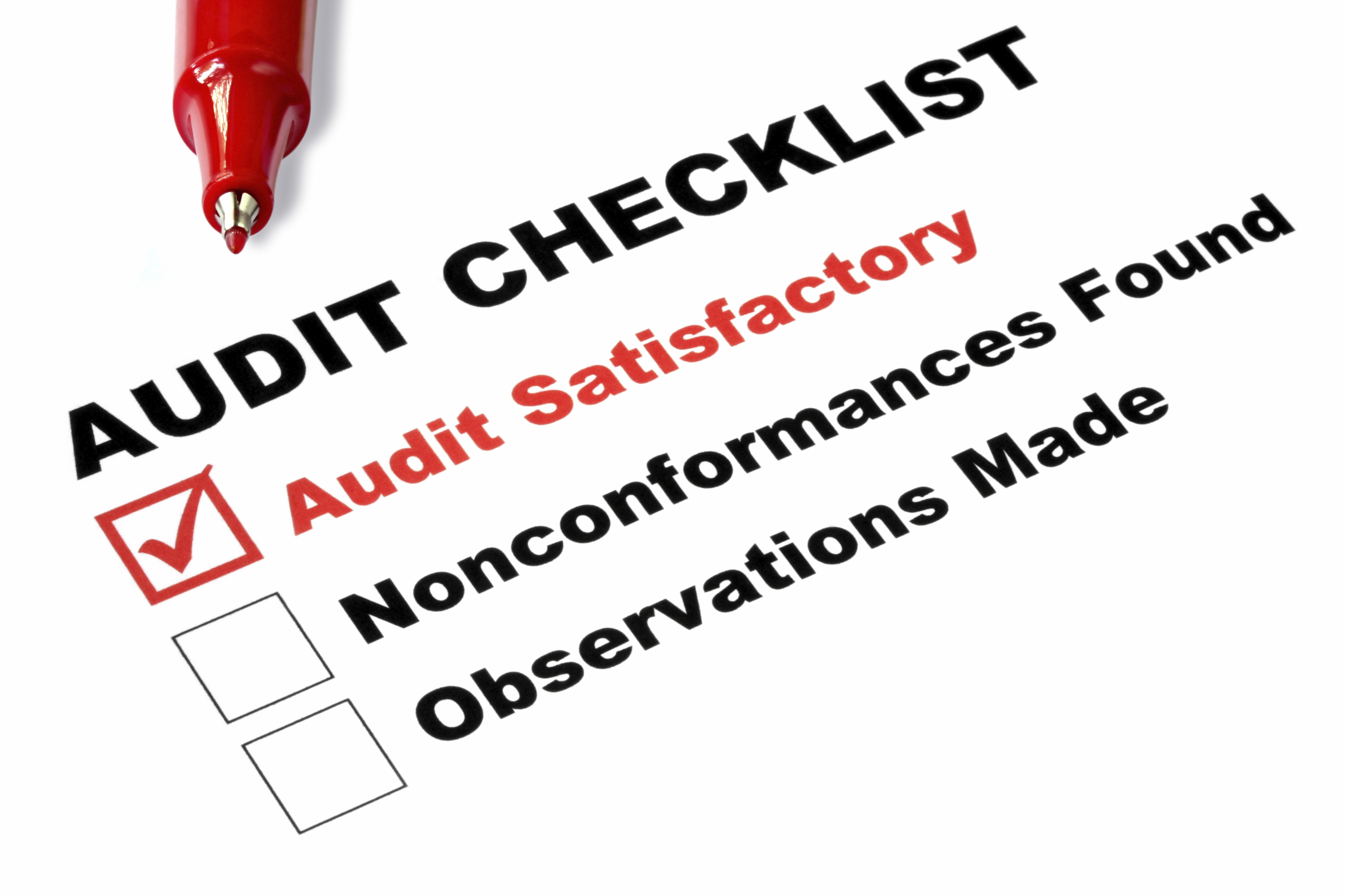 list of synonyms and antonyms of the word internal auditor training