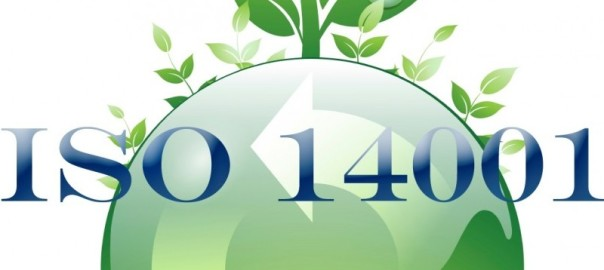 iso 14001 certification dubai 6