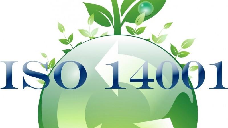 Explore the ISO 14001 EMS Standard in Dubai