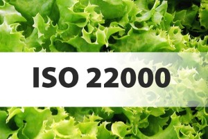 iso 22000 1